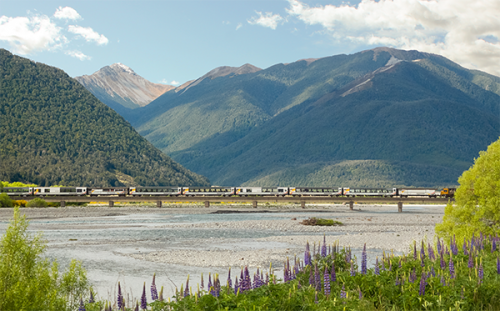 TranzAlpine crossing the Waimak